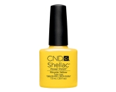 CND- Shellac Bicycle Yellow